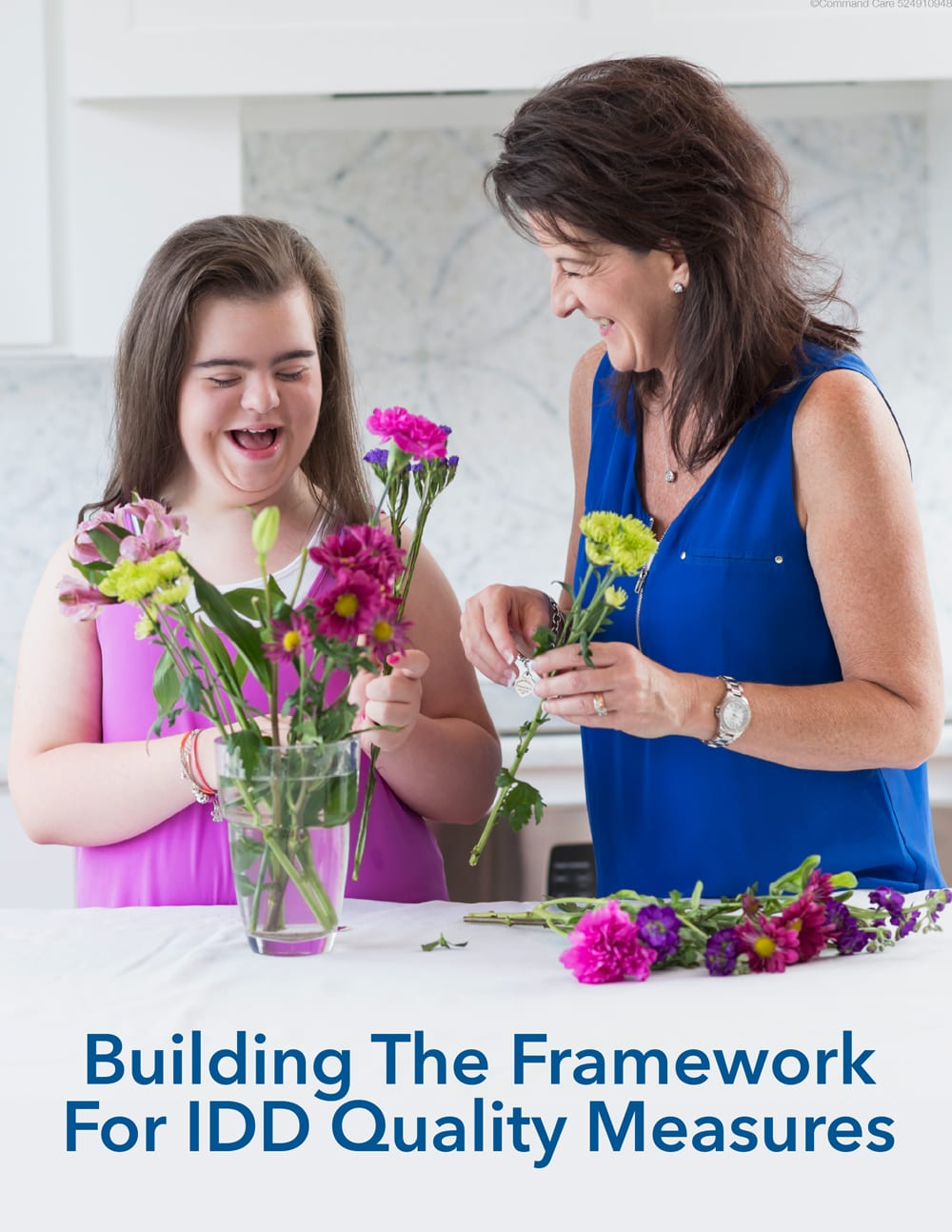 'Building The Framework for IDD Quality Measures Guide